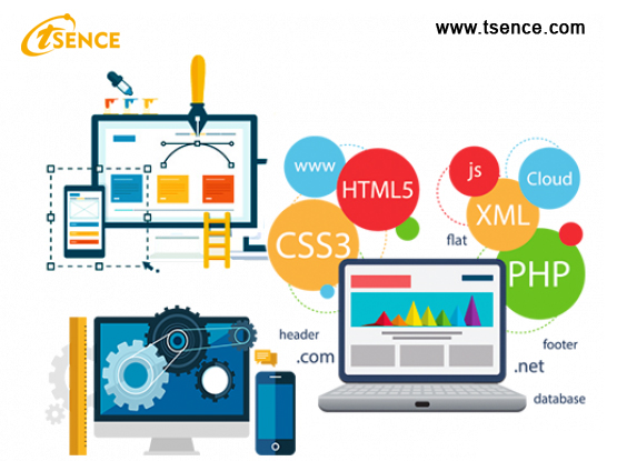 Phases of Creative Website Designing and Development Process